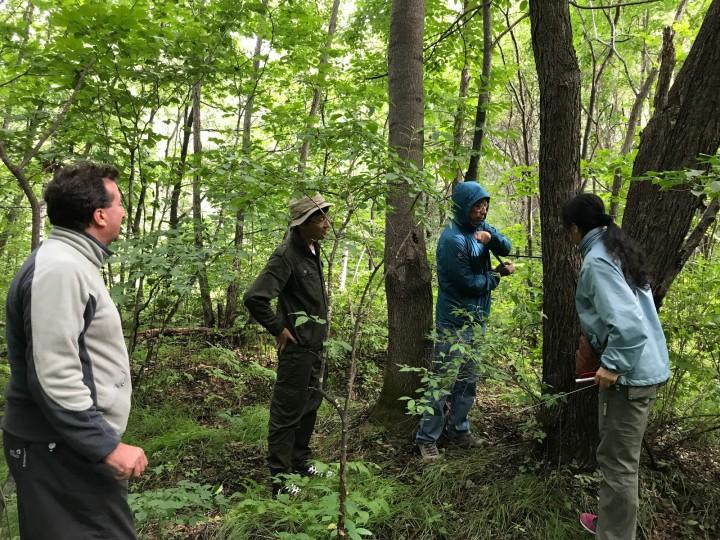20170827--黑河五大连池国家森林生态系统定位研究观测站--自然与生态研究所与瑞士联邦森林、雪与景观研究所联合开展树木年轮结构的研究 --瑞士联邦森林、雪与景观研究所Paolo Cherubini博士自然所倪红伟所长 黄庆阳博士 谢立红博士共同研究(7).JPG